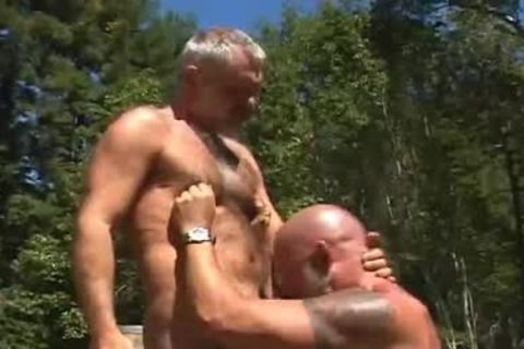 homo Bear Muscle males painfully Outdoor