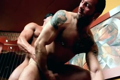 messy studs (homosexual studs) plowing