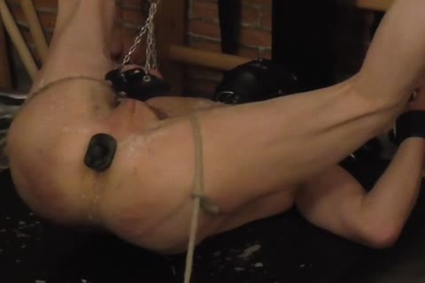 slavemaster: Sadist52   bondman: MasoFun During A 4 H Session The bondman Learned To Feel The Difference betwixt Whip, Flogger, Crop And Cane. that lad Ist Treated With lustful Wax, Elektroplug, Ginger, Penisplug. that lad is Suspended Upside Down,