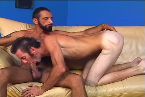 Two hairy men Randy And Tom Colt pound Each Other