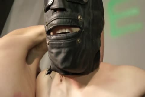 bdsm excited villein lad fastened Up And Punished