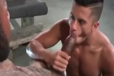 A Very charming Latino gay dude Likes Some coarse Greek From A thick African Shaft