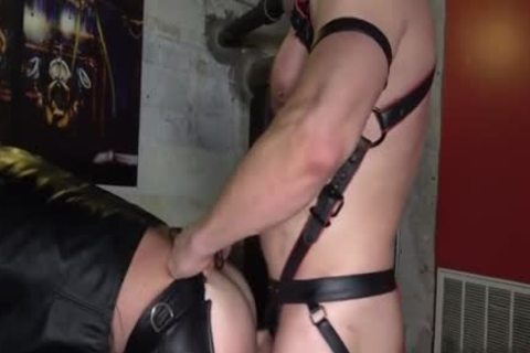 hairy homo ass ass pounding And ejaculation