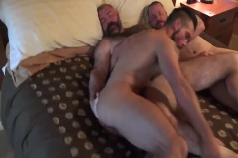 fine bushy Daddies plowing- Watch Part2 On GayBoysCam.com