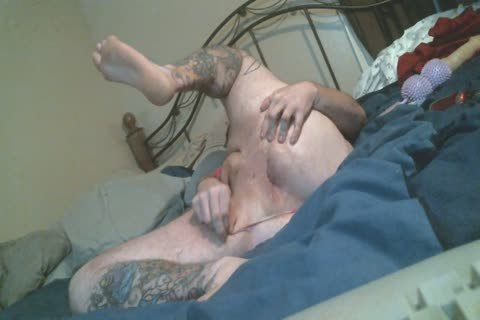 Harity bulky Bear spreads booty In thong pants Rides toy